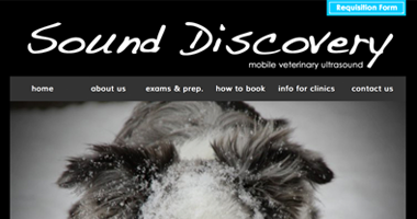 Sound Discovery Quickview